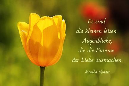Gelbe Tulpe In Grüner Natur